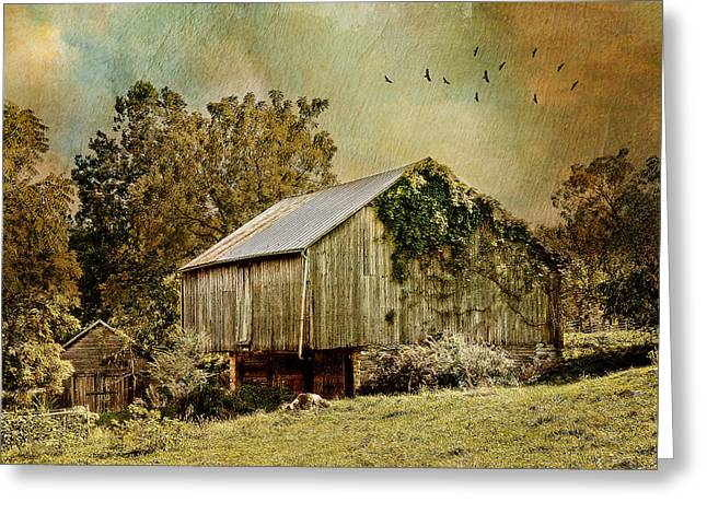 Big Barn Little Barn Greeting Card by Kathy Jennings