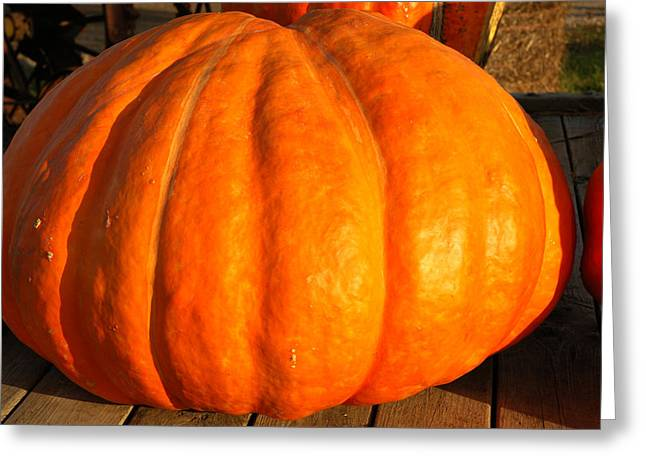 Big Orange Pumpkin Greeting Card