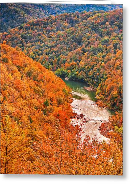 Big South Fork Greeting Card by Charles Fletcher