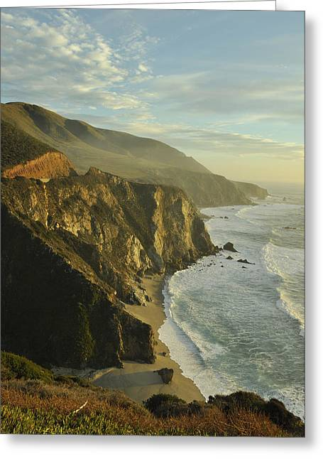 Big Sur Coast Greeting Card by Sandy Fisher