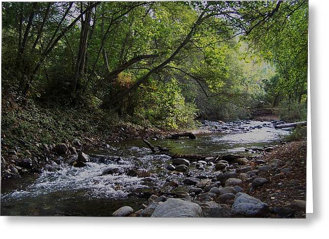 Big Sur River Greeting Card by Christine Drake