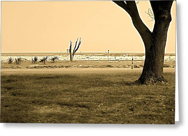 Biloxi Coast Greeting Card by Blake Yeager