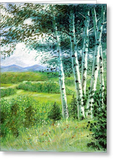 Birch Trees Greeting Card by John Lautermilch
