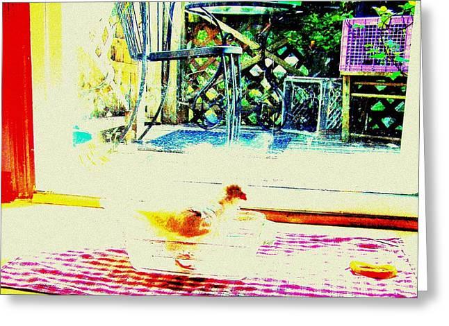 Bird Bath Greeting Card by YoMamaBird Rhonda