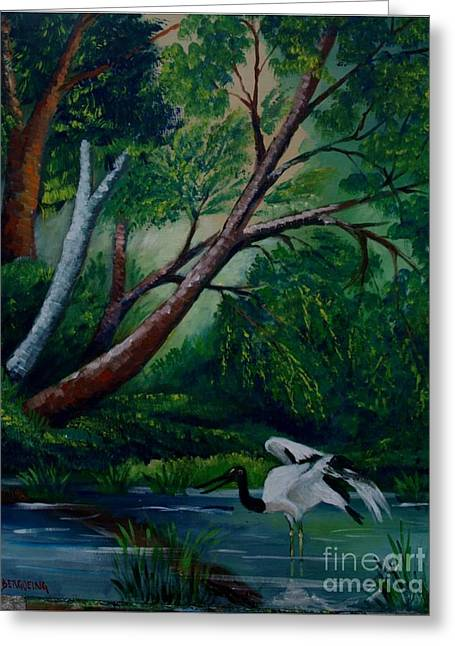 Bird In The Swamp Greeting Card