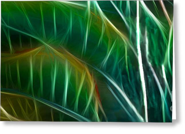 Bird Of Paradise Fractal Panel 3 Greeting Card