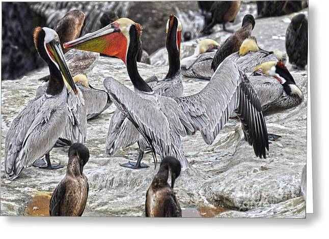 Bird Party  Greeting Card by Judy Grant