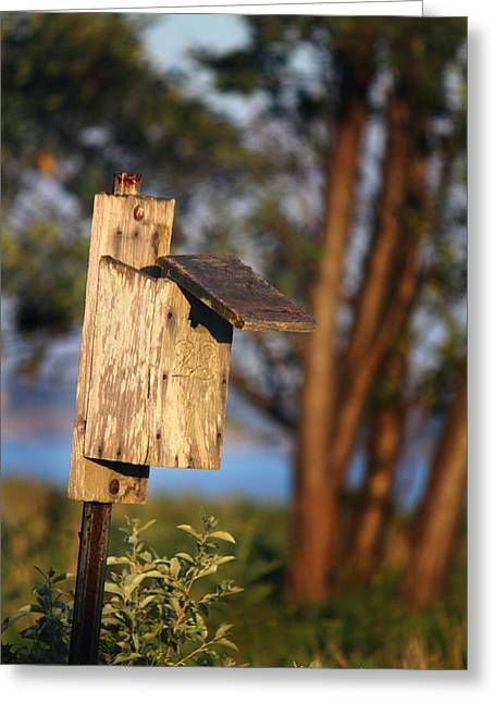 Birdhouse 23 Greeting Card by Andrew Pacheco