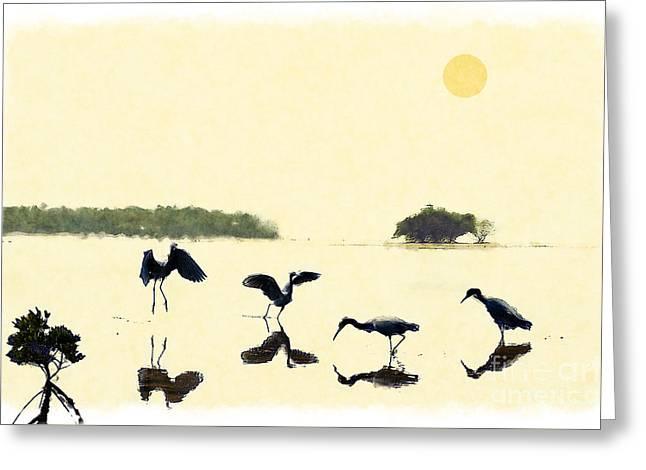 birds feeding in the Everglades Greeting Card