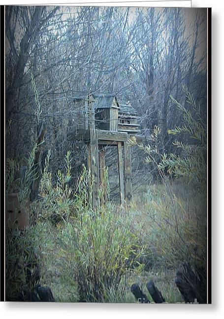 Bird's Haven In The Fall Greeting Card