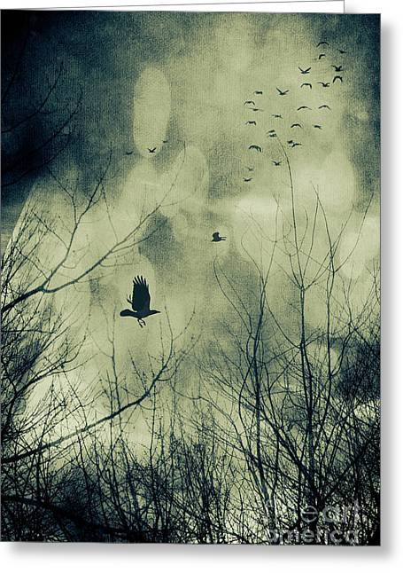 Birds In Flight Against A Dark Sky Greeting Card