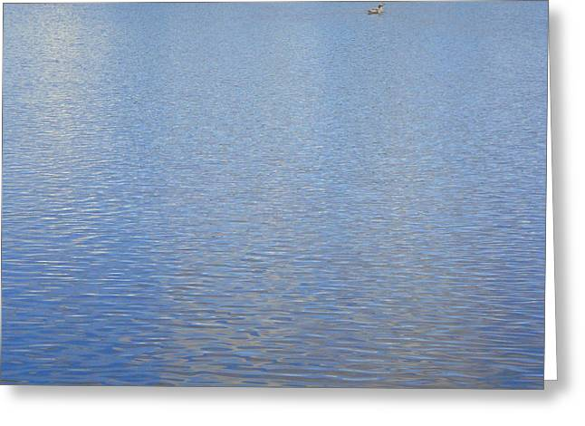 Birds On The Lake Greeting Card by Roberto Alamino