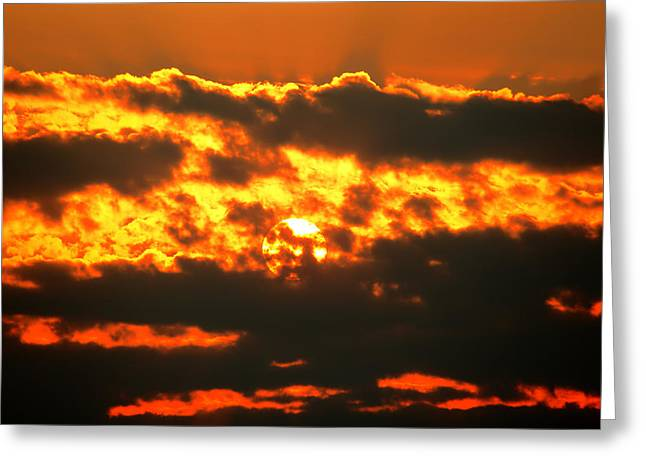 Birth Of A Sun Greeting Card by Metro DC Photography
