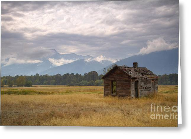 Bitterroot Homestead Greeting Card by Idaho Scenic Images Linda Lantzy