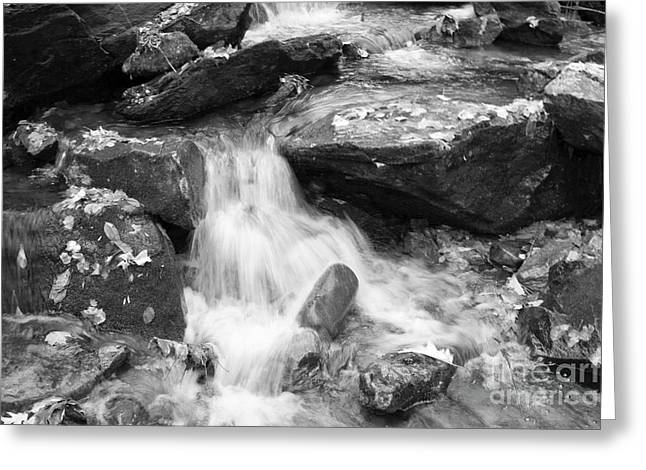 Greeting Card featuring the photograph Black And White Mini Waterfall by Michael Waters
