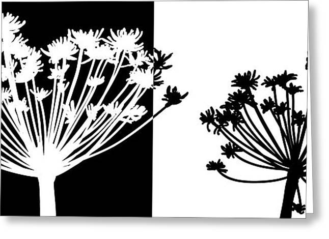 Black And White Greeting Card by Nomi Elboim