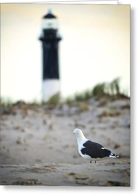 Black And White On The Beach Greeting Card by Vicki Jauron