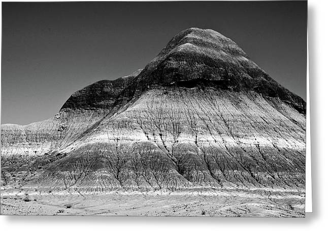 Black And White Painted Desert Greeting Card by Bob and Nadine Johnston