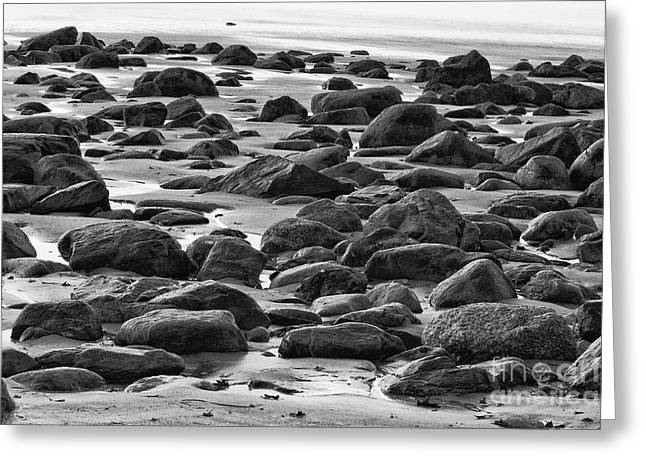 Black And White Wet Rocks Greeting Card