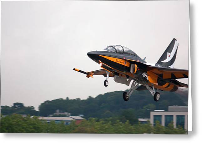 Black Eagle T-50 by Shirley Mitchell