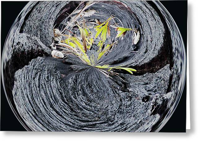Black Lava Sands Greeting Card