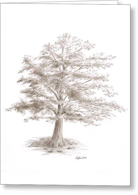 Black Oak Greeting Card