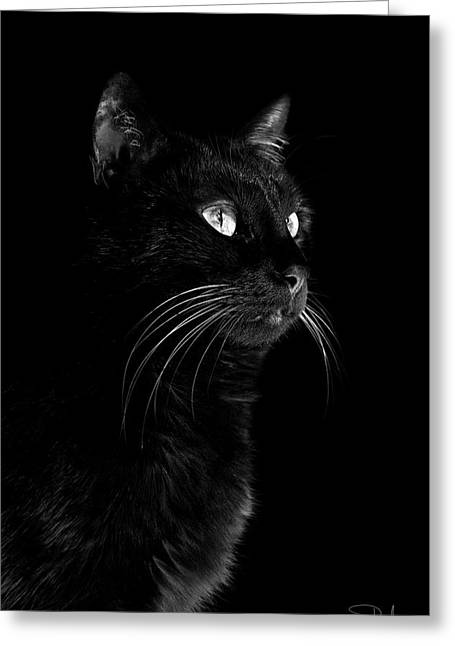 Black Portrait Greeting Card