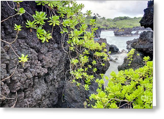 Black Sands Beach Hana Maui Hawaii Greeting Card by Dustin K Ryan