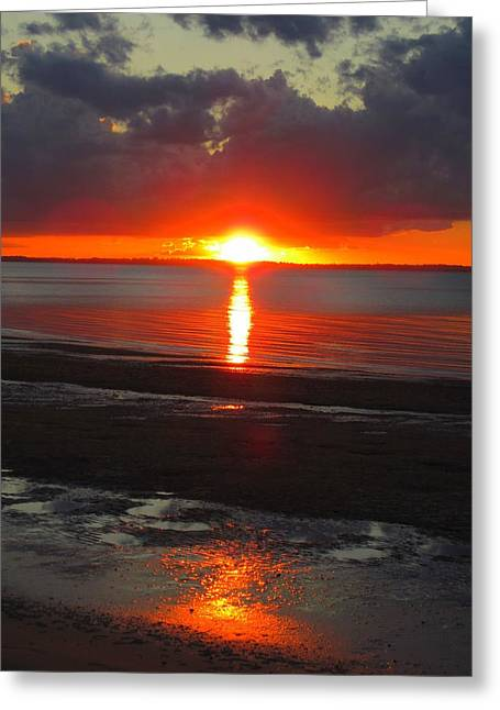 Greeting Card featuring the photograph Blazing Sunset by Ramona Johnston