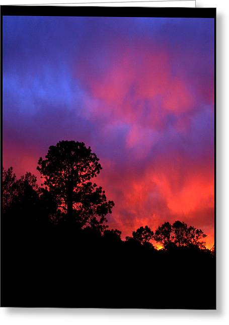 Greeting Card featuring the photograph Blessings From The Sun by Susanne Still