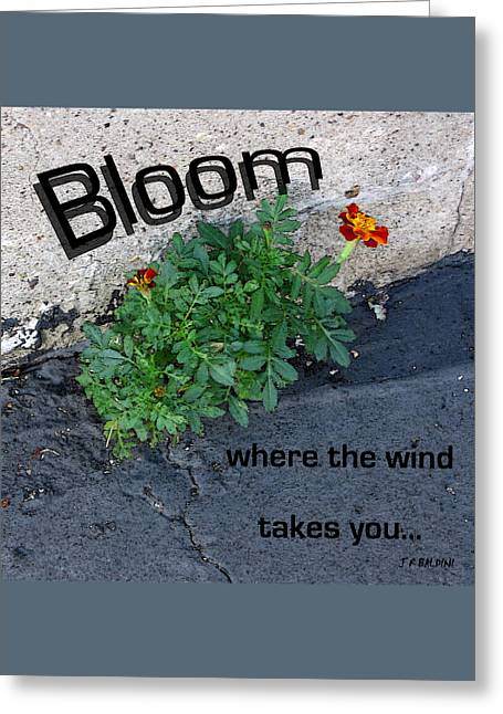 Bloom Where The Wind Takes You Greeting Card by J R Baldini