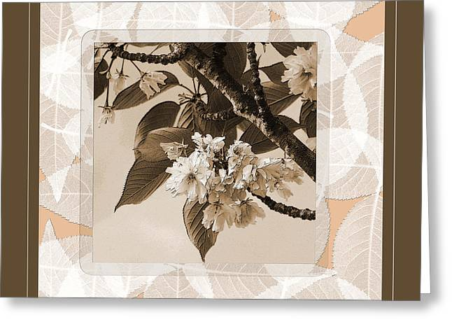Blooming Branch Greeting Card