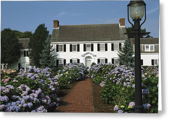 Blooming Hydrangeas Line A Homes Front Greeting Card