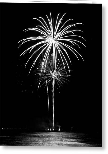 Blooming In Black And White Greeting Card by Bill Pevlor