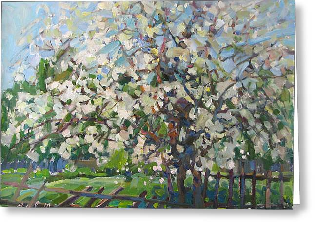 Blossoming Apple Tree Greeting Card by Juliya Zhukova