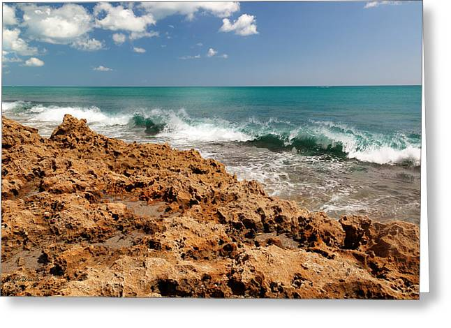 Blowing Rocks Jupiter Island Florida Greeting Card by Michelle Wiarda