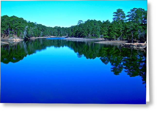 Blue Beauty Greeting Card by Frank SantAgata