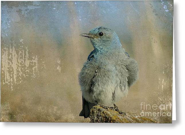 Blue Bird Greeting Card by Teresa Zieba