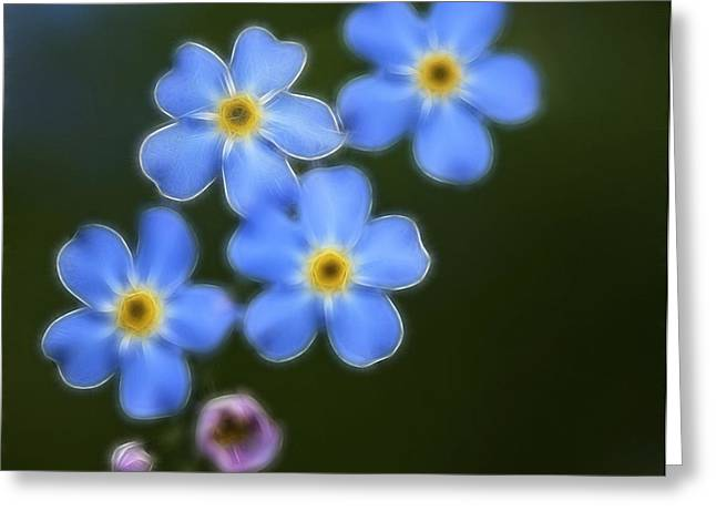 Blue By You Greeting Card by Chris Hartman Price