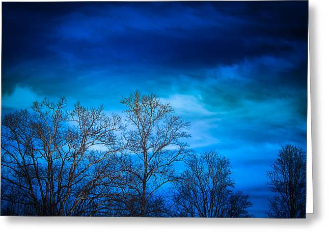 Blue Delight Greeting Card by Victoria Ashley