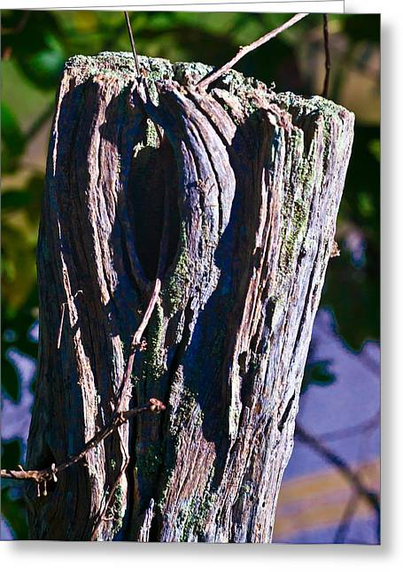 Blue Fence Post 2 Greeting Card