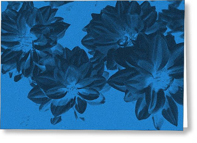 Blue Flower Art Greeting Card by Aimee L Maher Photography and Art Visit ALMGallerydotcom
