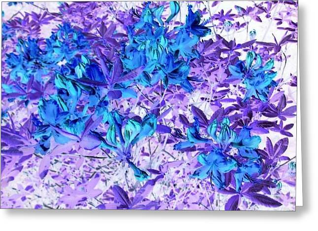 Blue Flowers Greeting Card by Nikoleta Jurcinova