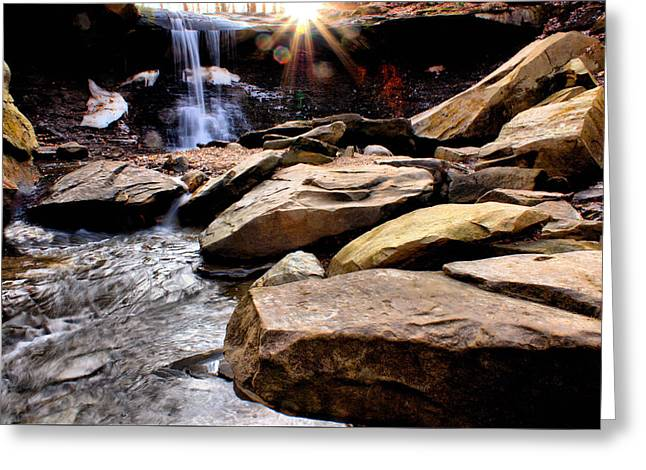 Blue Hen Falls Greeting Card by Michelle Joseph-Long