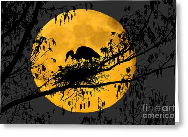 Greeting Card featuring the photograph Blue Heron On Roost by Dan Friend