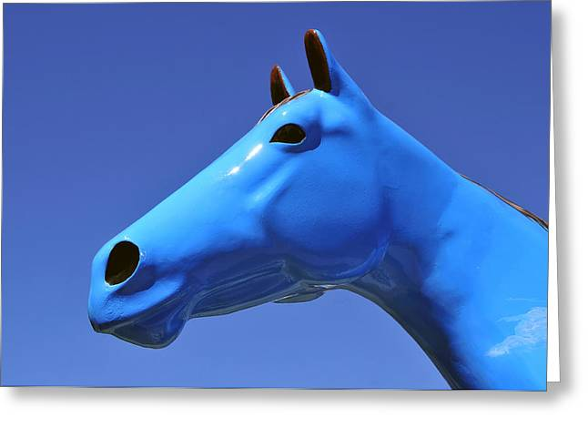 Blue Horse Greeting Card by David Lee Thompson