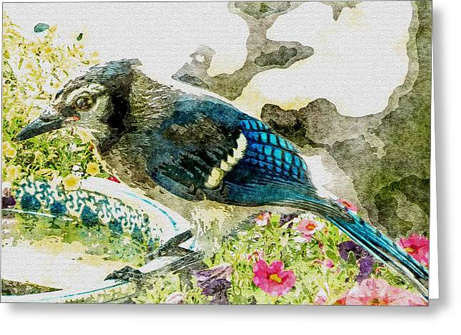 Blue Jay Art Greeting Card by Debbie Portwood