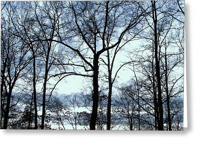 Greeting Card featuring the photograph Blue Mirage by Pamela Hyde Wilson
