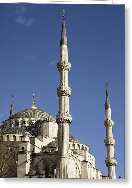 Blue Mosque Or Sultan Ahmet Camii Greeting Card by Axiom Photographic