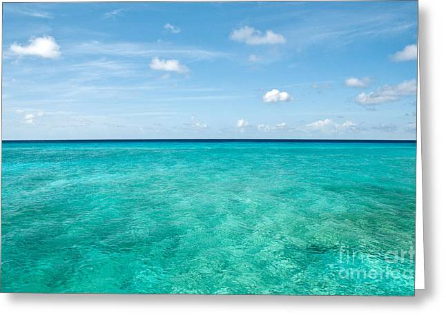 Blue On Blue  Greeting Card by Jim Chamberlain